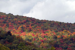 Parco nazionale di Great Smoky Mountains Fotografia Stock Libera da Diritti