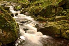 Parco nazionale di Harz Immagine Stock Libera da Diritti