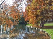 Parco nazionale di Helecine nel Belgio Fotografie Stock