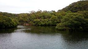 Parco nazionale di inseguimento dell'Ku-anello-gai di Bobbin Head @ fotografia stock libera da diritti
