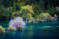 Parco nazionale di Jiuzhaigou Fotografia Stock