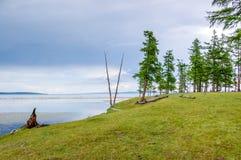 Parco nazionale di Khovsgol, Mongolia fotografie stock libere da diritti