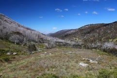 Parco nazionale di Kosciuszko in Australia Immagini Stock Libere da Diritti