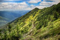 Parco nazionale di Krkonose del hrbety- di Kozi in repubblica Ceca fotografia stock libera da diritti