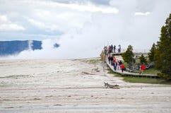 Parco nazionale di Paintpots Yellowstone degli artisti, Wyoming Immagine Stock Libera da Diritti