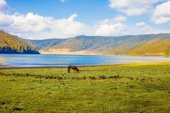 Parco nazionale di Pudacuo fotografia stock