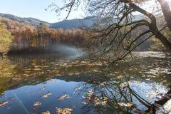 Parco nazionale di Sevenlakes in Autumn Bolu Turkey Yedigoller Milli Parki fotografia stock