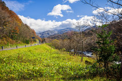 Parco nazionale di Shiretoko, Hokkaido Giappone Fotografia Stock