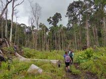 Parco nazionale di Similajau Fotografie Stock