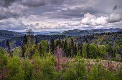 Parco nazionale di Tatra, Slovacchia Fotografia Stock Libera da Diritti