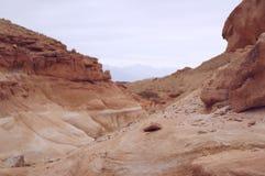 Parco nazionale di Timna vicino ad Eilat, fuoco selettivo su priorità alta Fotografia Stock Libera da Diritti
