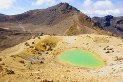 Parco nazionale di Tongariro Immagine Stock