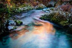 Parco nazionale di Triglav della gola di Vintgar Immagine Stock Libera da Diritti