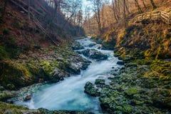 Parco nazionale di Triglav della gola di Vintgar Fotografia Stock Libera da Diritti