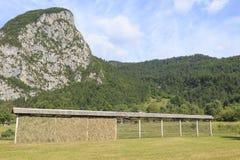 Parco nazionale di Triglav, valle di Bohinj, Julian Alps, Slovenia, Europa Immagini Stock Libere da Diritti