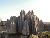 Parco nazionale di Tsingy de Bemaraha Patrimonio mondiale dell'Unesco Fotografie Stock
