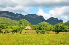 Parco nazionale di Vinales in Cuba Fotografie Stock