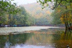 Parco nazionale di Yedigoller Bello, bolu fotografia stock libera da diritti