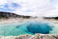 Parco nazionale di Yellowstone Fotografia Stock