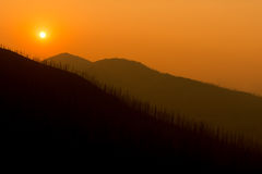 Parco nazionale di Yellowstone, U.S.A. fotografie stock