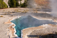 Parco nazionale di Yellowstone, Utah, U.S.A. Fotografia Stock
