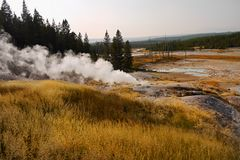 Parco nazionale di Yellowstone, Wyoming, Stati Uniti Fotografia Stock