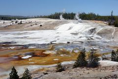 Parco nazionale di Yellowstone, Wyoming, Stati Uniti Immagini Stock Libere da Diritti