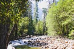 Parco nazionale di Yosemite Immagine Stock