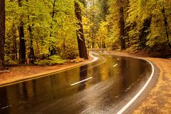 Parco nazionale di Yosemite in Californa Fotografie Stock Libere da Diritti
