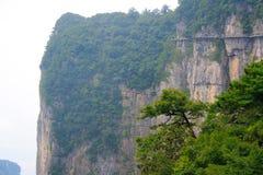 Parco nazionale di Zhangjiajie, montagne dell'avatar fotografie stock libere da diritti