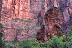 Parco nazionale di Zion Fotografia Stock