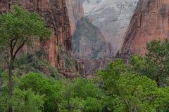 Parco nazionale di Zion Immagini Stock