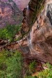 Parco nazionale di Zion Fotografie Stock Libere da Diritti