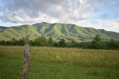Parco nazionale fumoso della montagna Fotografia Stock