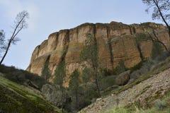 Parco nazionale gennaio dei culmini Immagine Stock
