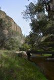 Parco nazionale gennaio dei culmini Fotografia Stock