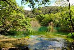 Parco nazionale Krka in Croazia Fotografie Stock Libere da Diritti