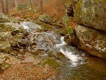 Parco nazionale la Virginia di Shenandoah Immagini Stock Libere da Diritti