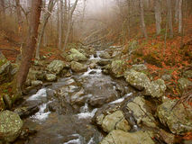 Parco nazionale la Virginia di Shenandoah Immagini Stock