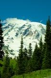Parco nazionale Reinier Fotografia Stock