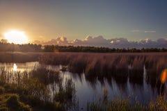 Parco nazionale, riserva Immagini Stock