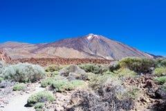 Parco nazionale Teide Fotografia Stock