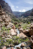 Parco nazionale U.S.A. 14 di Grand Canyon Fotografia Stock