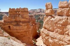 Parco nazionale Utah del canyon di Bryce fotografia stock libera da diritti