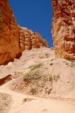 Parco nazionale Utah del canyon di Bryce immagini stock libere da diritti