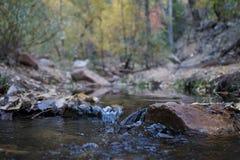 Parco nazionale Utah, Stati Uniti di Zion fotografia stock