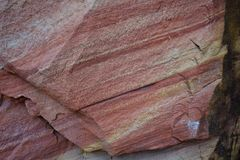 Parco nazionale Utah, Stati Uniti di Zion immagine stock libera da diritti