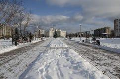 Parco nell'inverno Fotografia Stock