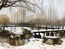 Parco nell'inverno Fotografia Stock Libera da Diritti
