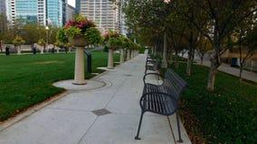 Parco nella città immagini stock libere da diritti